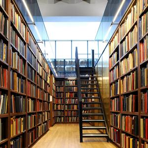 Библиотеки Алексина